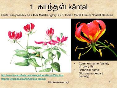 99 Tamil flowers – Kurunji paatu – flowers 1-10 – கற்க